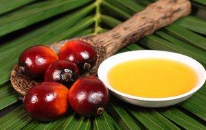 Импорт пальмового масла в РФ в январе-ноябре увеличился на 24%