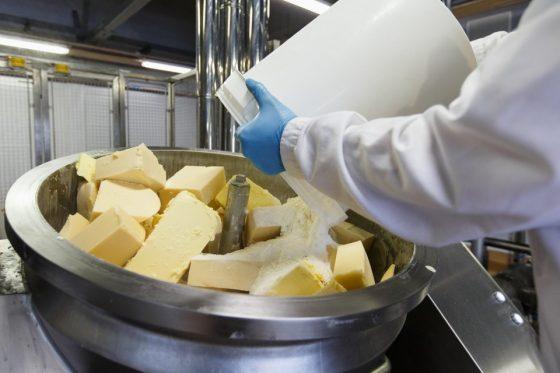 Курский завод Milkiland решили банкротить без «Невских сыров»