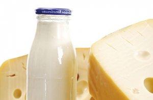 Выручка «Русагро» в сегменте «молочные продукты» выросла до 3,9 млрд. рублей