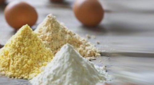 Цех по производству яичного меланжа начал работу под Белгородом