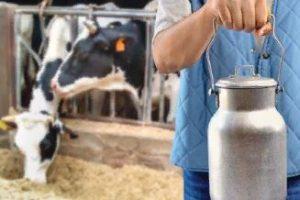 Рынок молока и молочной продукции