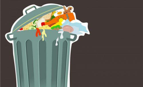 Депутаты предложили перерабатывать просроченные продукты в корма и удобрения