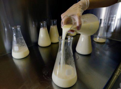 За полгода Роспотребнадзор Коми выявил семь фактов фальсификации сыра, масла и молока