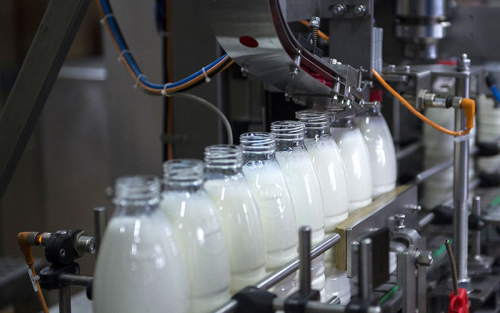 Строительство нового комплекса молочного комбината в Дмитровском округе завершено на 80%