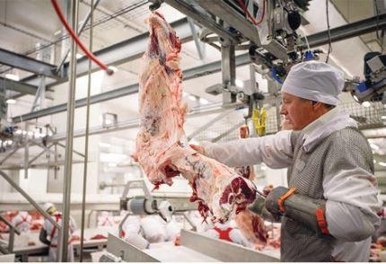 Рынок мяса в условиях пандемии. Сценарии развития мясного рынка России в 2020-2021 гг.