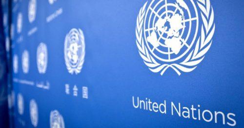 Группе «Черкизово» присвоен статус поставщика Организации Объединенных Наций