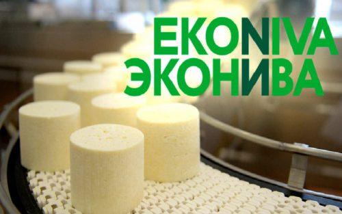 Сырный завод «ЭкоНивы» в новосибирском поселке Маслянино начнет работу весной 2021 года