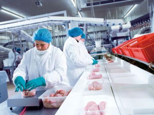 Росстат: производство мяса в России за январь – август 2020 года выросло на 11,5%