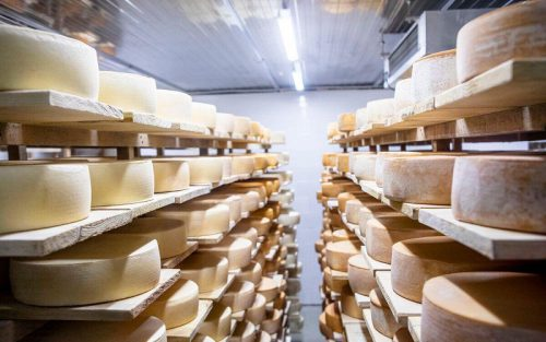 За девять месяцев в России произведено 425 тысяч тонн сыра – Росстат