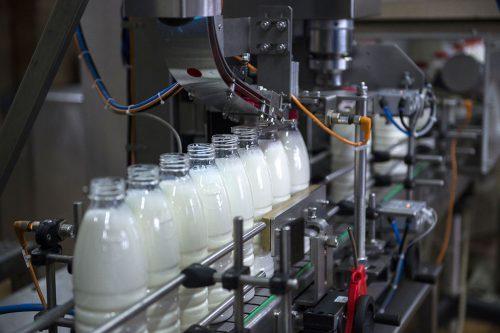 Калужское предприятие поделилось опытом органического молочного животноводства