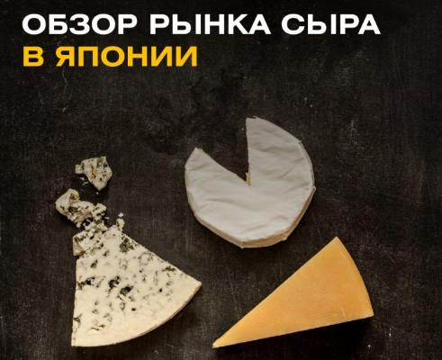Обзор рынка сыра в Японии