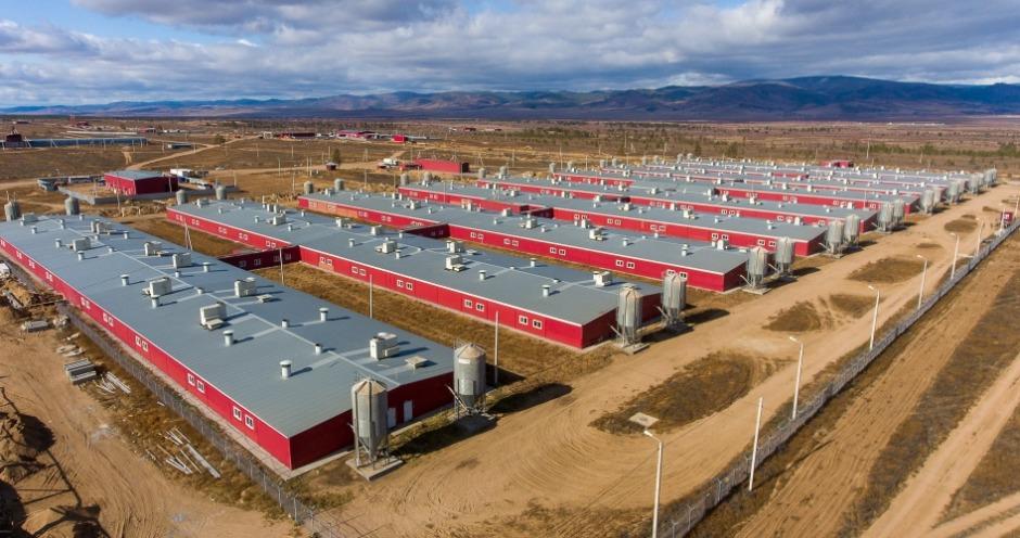 Восточно-Сибирский свинокомплекс стал новым резидентом ТОР «Бурятия»