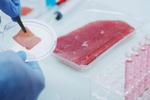 В университете Макмастера изобрели новую технологию выращивания мяса