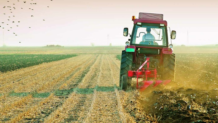 «Известия»: Минсельхоз хочет упростить изъятие невостребованных земель в пользу государства