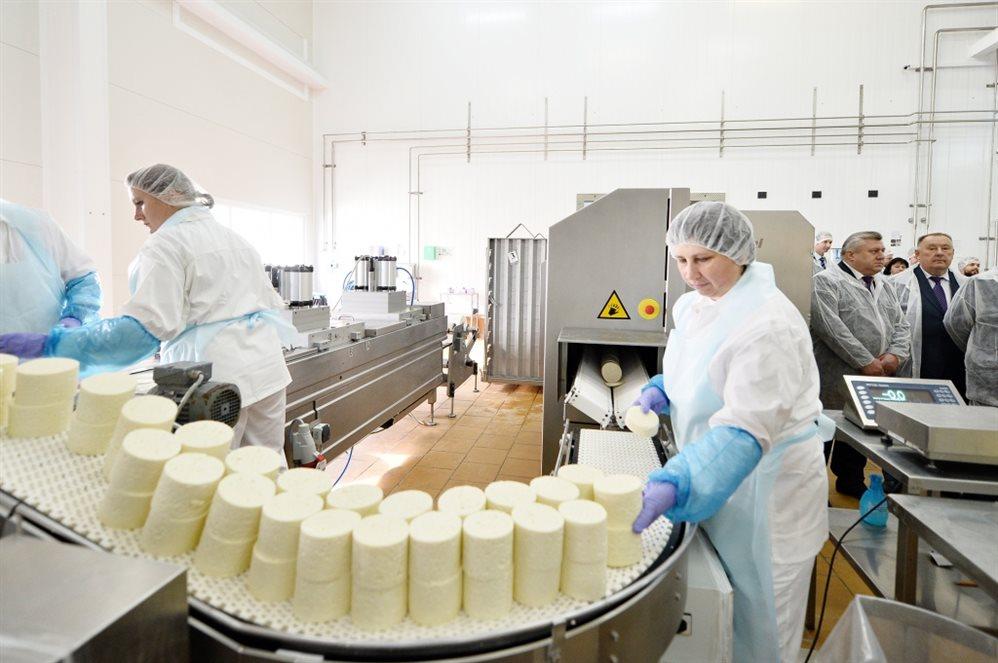 Молочникам не нужно конкурировать с производителями альтернатив — Елена Лобанцова
