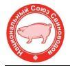 Рейтинг крупнейших производителей свинины в РФ по итогам 2020 года.