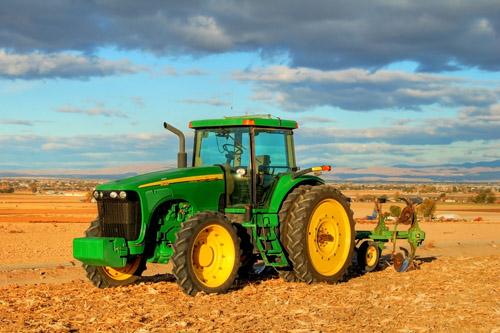 Кризис приведет к ренессансу малых форм хозяйствования на продовольственном рынке