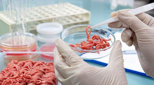 Orbillion Bio выращивает баранину, лосятину и мраморную говядину вагю