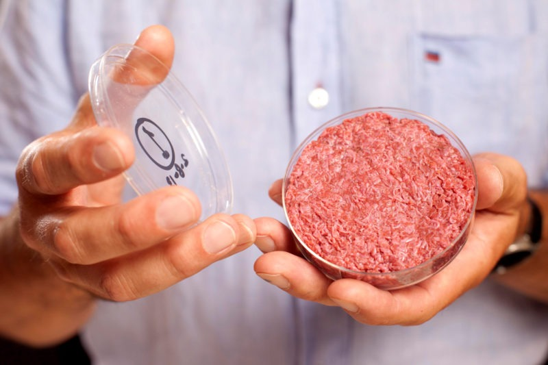 Крупнейшая немецкая фабрика по производству свинины делает инвестиции в веганство