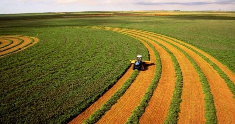Рейтинг Forbes: «Агрокомплекс» им. Ткачева вновь признан крупнейшим землевладельцем России