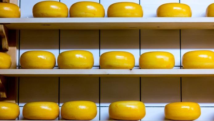 «Фудлэнд» и «ВБД» стали лидерами рейтинга крупнейших сыродельных компаний