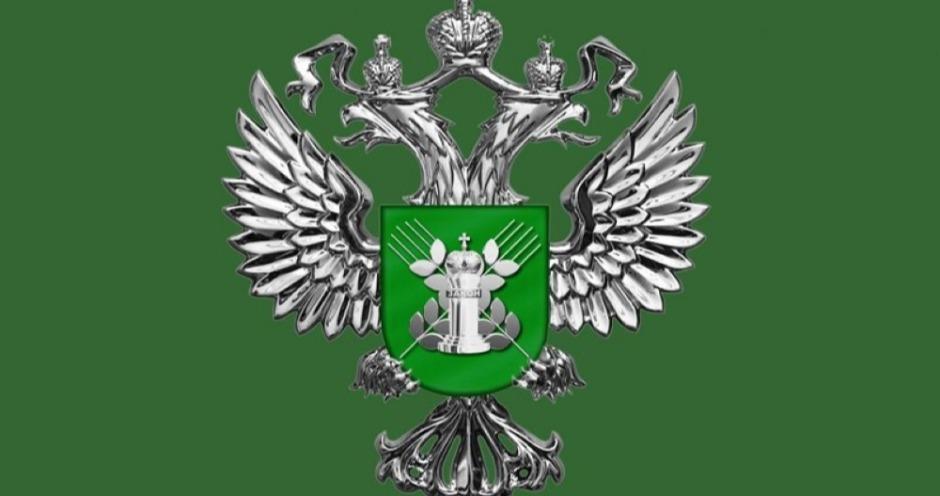 Россельхознадзор ввел запрет на поставки птицы из Венгрии, Словакии и Франции