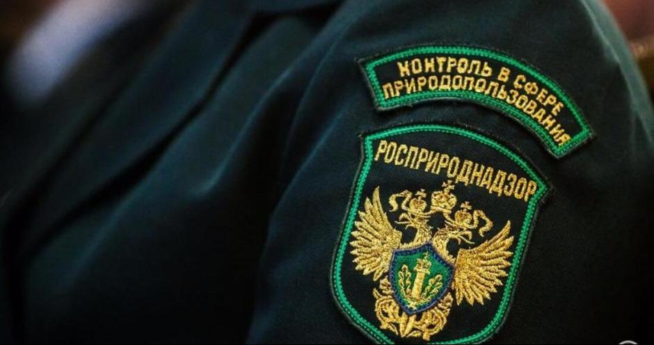 Суд оштрафовал Линдовскую птицефабрику на ₽240 тысяч по иску Росприроднадзора