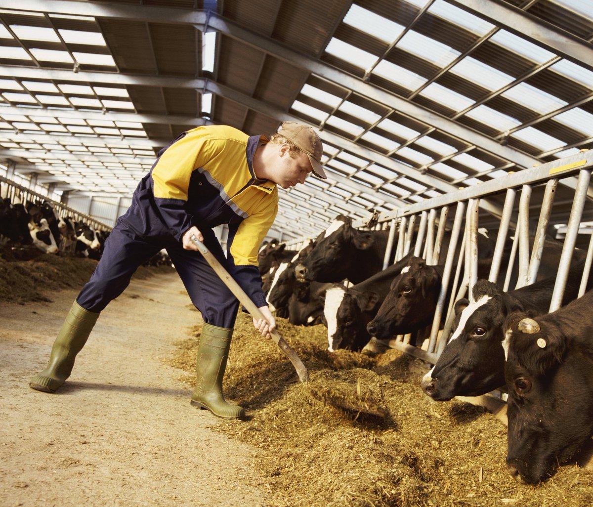 Эксперты: реализация фермерами товаров в поле позволит им выйти из зависимости от сетей