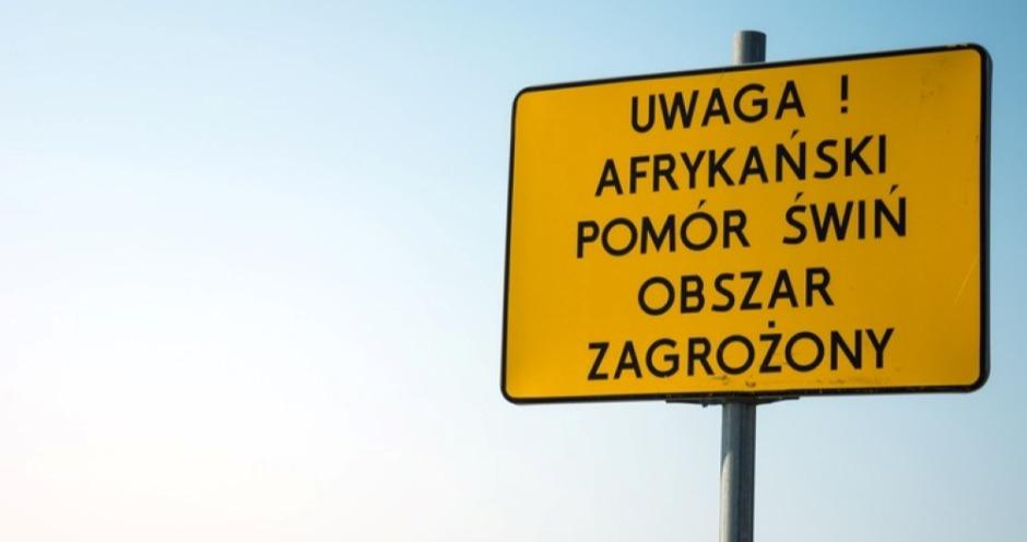 Польские ритейлеры отказываются принимать мясо из «красной зоны» по африканской чуме свиней