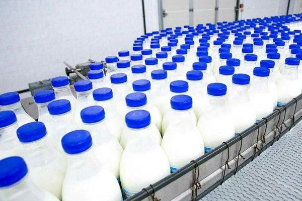 Российский молочный рынок 2021: фаза торможения