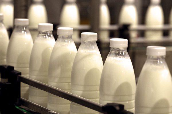 Наценка на социальное молоко и сметану составляет 15% — Дмитрий Востриков