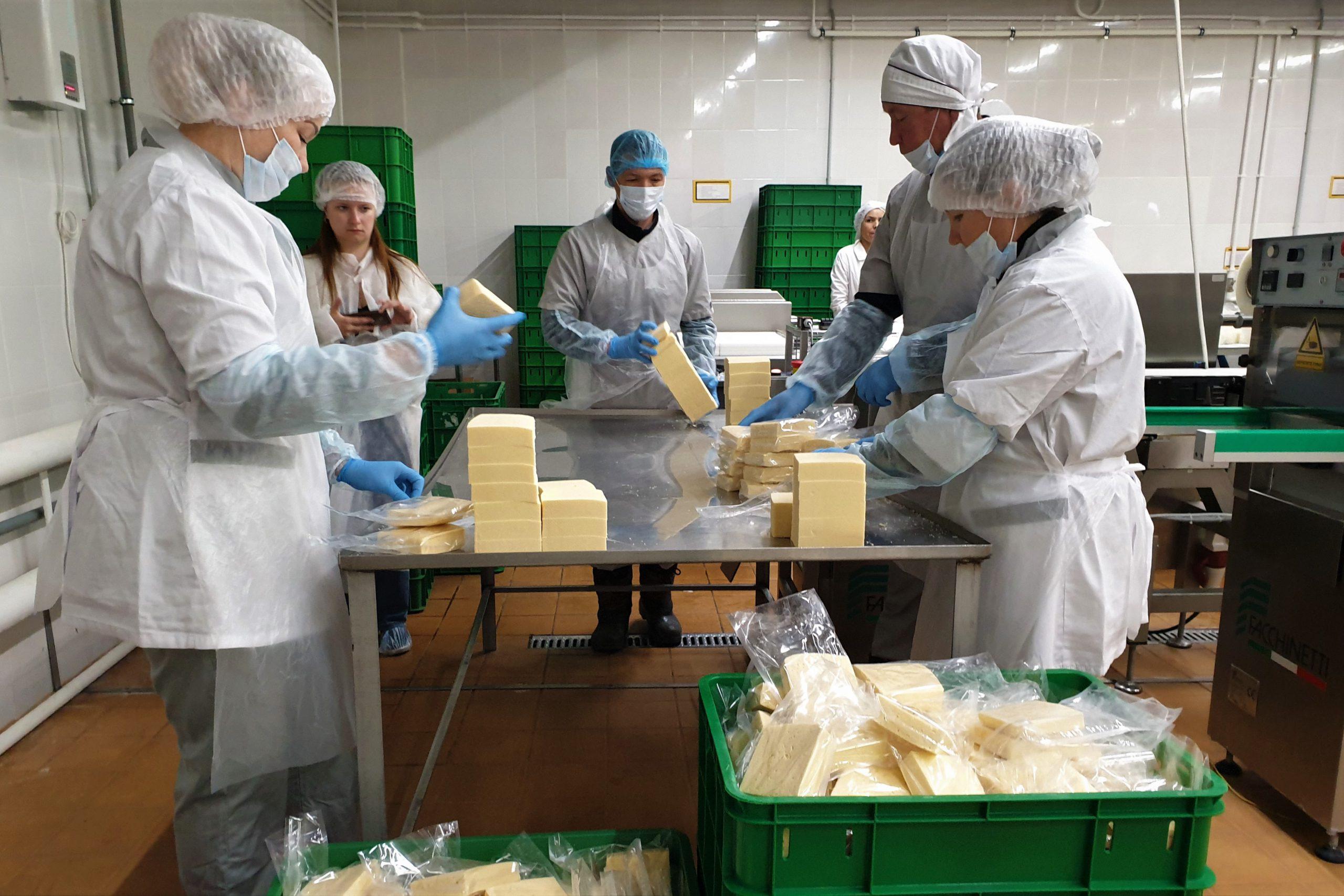 На сырзаводе «Комос Групп» начаты пусконаладочные работы и пробный выпуск продукции на новой линии