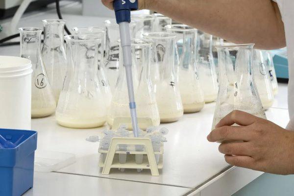 Минсельхоз утвердил новые правила ветеринарно-санитарной экспертизы молока