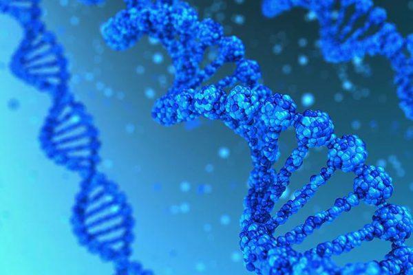 Ученые создали «генератор еды», превращающий пластик в белок