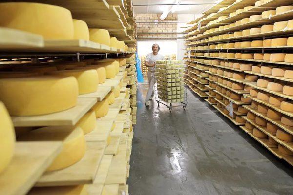 В импорте Казахстана растет доля российских сыров